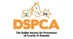 DSCPA Logo